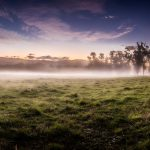 Driving to Narbethong, Victoria